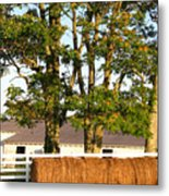 Hay Bales And Trees Metal Print