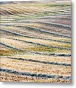 Hay Billows II Metal Print