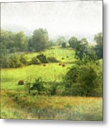 Hay Fields Metal Print