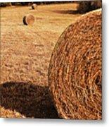 Hay In The Field Metal Print