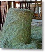 Hay Is For Horses Metal Print