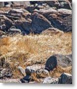 Hay Ocean Rocks Metal Print