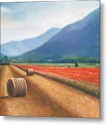 Haybales In Italy Metal Print by Ann  Cockerill