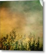 Haze On Moonlit Meadow Metal Print