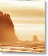 Hazy Beach  Metal Print