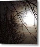 Hazy Moon Through The Trees Metal Print