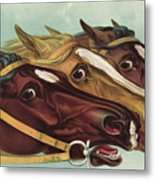 Head And Head At The Winning Post Metal Print