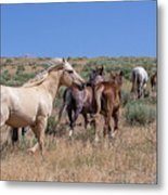 Head Em Up And Move Em Out Metal Print