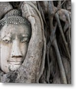 Head Of Buddha Statue In The Tree Roots Metal Print