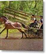 Heading To The Gulch Metal Print