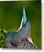 Heads Up Metal Print