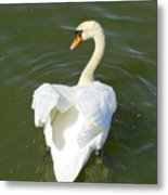 Heart Of A Swan Metal Print
