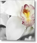 Heart Of The Orchid Metal Print