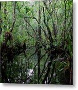 Heart Of The Swamp Metal Print