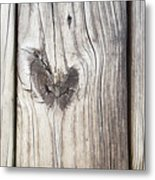 Heart Of Wood Metal Print