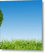 Heart Shape Tree On Green Grass Field Metal Print