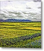 Heartland Oil Metal Print