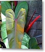 Hearts In The Wild Metal Print