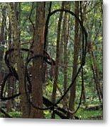Hearts In The Woods Metal Print