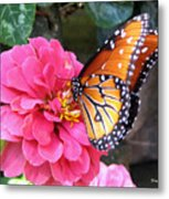 Hearts On Her Wings Metal Print by Trina Prenzi