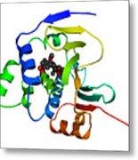 Heat Shock Protein 90 Metal Print by Ted Kinsman