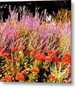 Heather And Sedum Metal Print