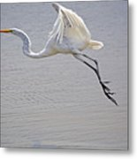 Heavy Flight Metal Print