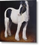 Heavy Stallion  Glin Fair Metal Print
