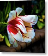Heavy With Dew Metal Print