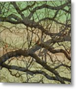 Hedge 3 Metal Print