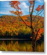 Heights Of Autumn Metal Print