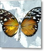 Heliconia Butterfly Metal Print