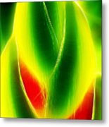 Heliconia Stem In Costa Rica Metal Print