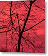 Hello Evening Metal Print