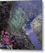 Hells Canyon Metal Print