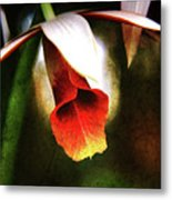 Her White Hat Metal Print