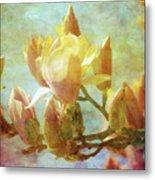 Herald Spring 8878 Idp_2 Metal Print