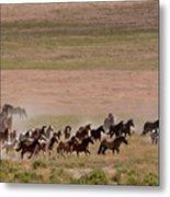 Herd On The Move Metal Print