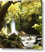 Hermon Stream Nature Reserve Banias Metal Print