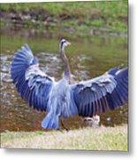 Heron Bank Landing Metal Print