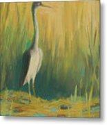 Heron In The Reeds Metal Print by Renee Kahn
