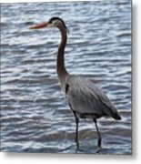 Heron On  Lake Guntersville Metal Print