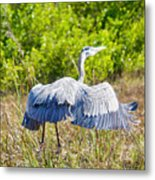 Heron On The Rise Metal Print