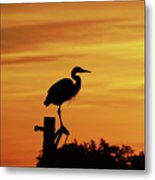 Heron Sunrise Metal Print