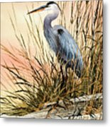 Heron Sunset Metal Print by James Williamson