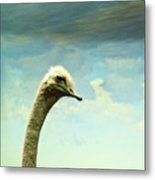 Hi, I Am The Ostrich Metal Print