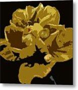 Hibiscus 14 Metal Print