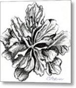 Hibiscus Bloom Metal Print