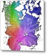Hibiscus S D Z 2 Cool Rainbow 3 Dimensional Metal Print