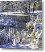 Hickory Nut Grove Landscape Metal Print